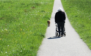 Walking, walker, rollator, dog walk, path, field, senior, woman with walker