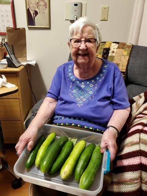 Older adult senior female with home grown cucumbers